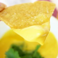 Paleo and AIP Queso! Top-8 allergen free! (Chips in photo are AIP too!) from He won't know it's paleo.
