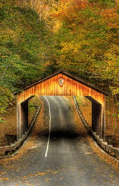 Sleeping Bear Covered Bridge, Sleeping  Bear National Lakeshore, Michigan 1949 (I don\'t know where in Michigan this is, but it\'s pretty:)