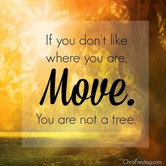 If you don't like where you are: MOVE. You are not a tree. Chris Freitag