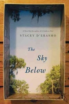 the sky below by stacy d'erasmo
