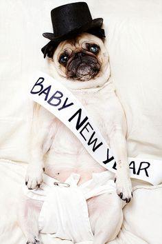Happy New Year My Lily lol !