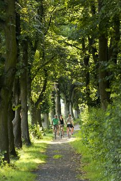 Natur pur! Radler fühlen sich einfach wohl - http://www.schweinfurt360.de/  #Natur #Rad #Erholung