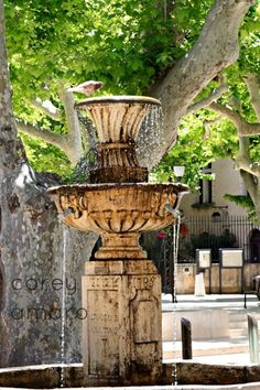 Provence, France, Fountain in Square by Corey Amaro