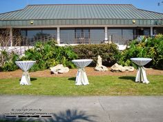 Marie Selby Botanical Gardens Wedding in Sarasota, FL by Sarasota Catering Company (656)