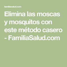 Elimina las moscas y mosquitos con este método casero - FamiliaSalud.com