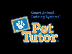 Smart Animal Training Systems has invented the Pet Tutor, a very versatile tool for positive reinforcement training - click on the pin for more info.