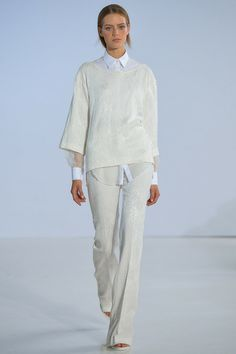 Philosophy | Spring 2014 Ready-to-Wear Collection | Style.com