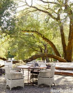 Oak trees shade a round table surrounded by wicker chairs.