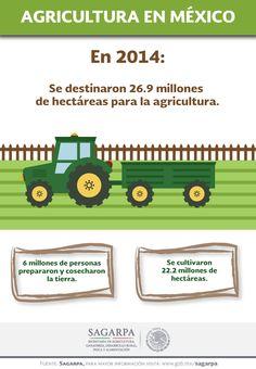 Agricultura en México. SAGARPA SAGARPAMX #SomosProductores