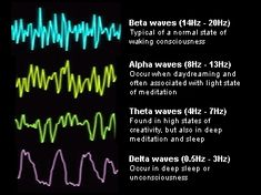 Varying Brainwave Frequencies - Maybe We Should All Float - IFloat in Westport, CT. Deprivation Tank, Sensory Deprivation, Float Spa, Float Therapy, Vagus Nerve, Spa Design, Alternative Therapies, Brain Waves, Neurotransmitters