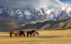 Kazakhstan Photo by: Konstantin Kikvidze
