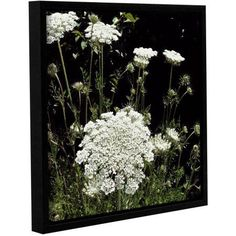 ArtWall Kevin Calkins Queen Anne's Lace Gallery-Wrapped Floater-Framed Canvas, Size: 36 x 36, White