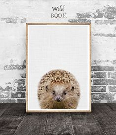 Hedgehog Print Nursery Animal Decor Animal Print Hedgehog
