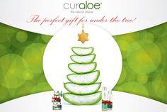 CurAloe, the perfect natural gift! www.curaloe.com