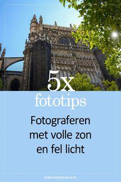 5x tips voor het fotograferen met volle zon - Fotografille