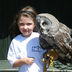 ireland woodlands falconry ... This young Girl is starting early....How wonderful it is to see women in this sport as it was mainly a mans sport and royalty only...