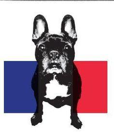 Le petite Frenchie