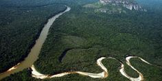 Parque Serranía de Chiribiquete en Colombia: un milagro de 2,7 millones de hectáreas