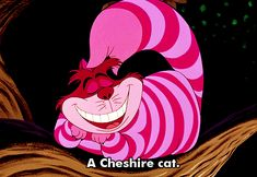 alice in wonderland character? Cheshire. You are very mysterious and kinda dark. You can also be sneaky, silly and cunning!