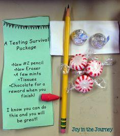 Sparking Student Motvation: Testing Encouragement Cards