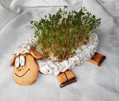 Ovečka na řeřichu -veselá ovečka sloužící jako klíčidlo na řeřichu. Do tělíčka stačí dát vatu, poházet semínka a nezapomenout rosit :-). Každý kus je originál, tudíž se může v detailech mírně lišit. - velikost cca 20x14 cm - zasílám jako křehké zboží, doba dodání cca 2-3 týdny (samozřejmě se budu snažit co nejdříve) Ceramic Bowls, Ceramic Pottery, Ceramic Art, Pottery Sculpture, Sculpture Clay, Ceramics Projects, Clay Projects, Diy And Crafts, Crafts For Kids