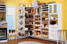 Kitchen Storage Solutions Pantry Storage Cabinets in storage home with regard to Present Household
