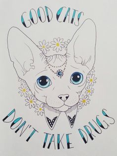 Good cats don't take drugs
