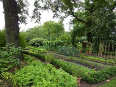 Prince Charles vegetable garden | Flickr - Photo Sharing!