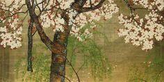 by Konoshima Okoku Rare Plants, Asian Art, Japanese Art, Cherry Blossom, Masters, Landscapes, Sketches, Inspired, Painting