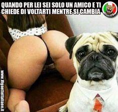 * Il cambio amico (www.VignetteItaliane.it)
