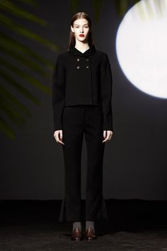 Araks Fall 2013 Ready-to-Wear Collection Slideshow on Style.com