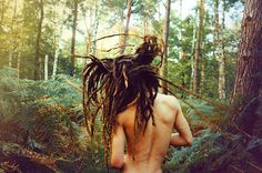 dreadlocks in the forest