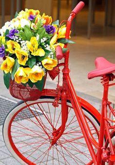 red bike & flowers