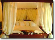 Amihan Pool Villa (Executive Suite)