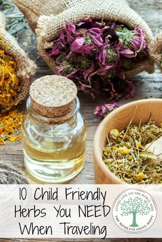 Don't let sickness, minor cuts, bumps and bruises ruin your travels. Keep these 10 Child Friendly Herbs on hand anytime you travel! The Homesteading Hippy #homesteadhippy