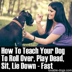 Please Share This Page: Photo © milanmarkovic78 – fotolia.com This video by Zak George's Dog Training rEvolution is a very effective video utilizing the lure training technique. If you have a new dog, this video will serve highly beneficial for you because the training here presents a fast way to teach multiple commands in a …