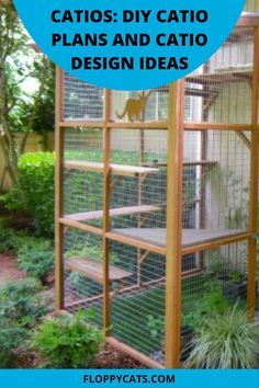 Whether or not to let your cat outside, can be a hard choice for some. How do you make sure they are safe outside considering that they are not used to defending themselves from cars, other animals outside, or even other people? The answer is installing a catio. A catio a patio for cats that is closed with special fencing so that your cat will be safely kept inside. Click to learn more about how to keep your cat safe outside. Cat Presents, Cat Biting, Cats Outside, Cat Behaviour, Cat Fountain, Cat Leash, Pet Cremation, Cat Products, Outdoor Cats
