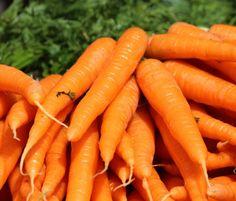 cosmética natural y vegana! : Aceite de zanahoria