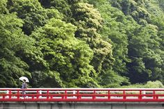 Couples can take the Romance Car to Hakone and experience one of its famous hot springs or stay at Japan's first Western hotel.