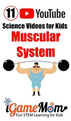 Teacher approved science videos on YouTube teaching kids human body muscular system, for students in preschool kindergarten to middle and high school. Science Videos For Kids, Elementary Science Experiments, Science Activities For Kids, Science Fair, Teaching Science, Learning Activities, Teaching Kids, Kids Learning, Steam Activities
