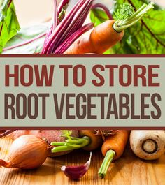 Learn how to store potatoes and other root vegetables long term.