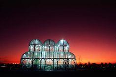 Бразилия. Ботанический сад в городе Куритиба. Источник: Carlos Ruggi
