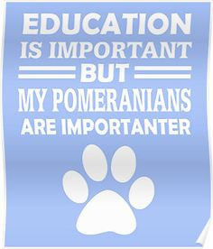 Pomeranians Are Importanter
