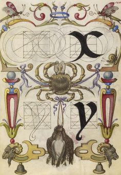Joris Hoefnagel (illuminator)  [Flemish / Hungarian, 1542 - 1600],                  		            Guide for Constructing the Letters x and y,                      		        Flemish and Hungarian, about 1591 - 1596