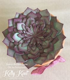Stamp Review Crew – Oh So Succulent | kelly kent
