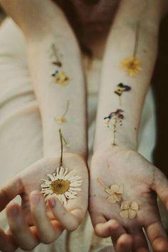 Gin: Hoa mỏng, hoa không giữ được trong tay. Trân trọng mà thưởng thức là tốt rồi