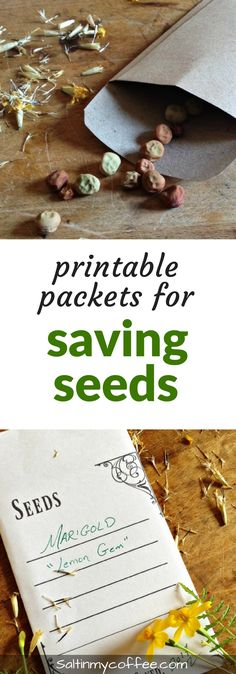 Click to print your own packet for saving seeds from your garden!