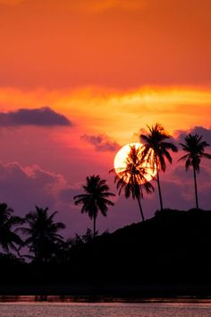 Tropical Sunset, Hawaii