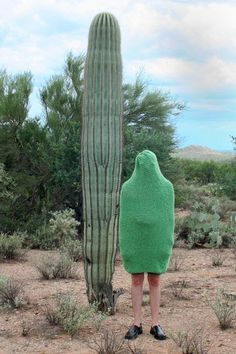 surreal real life travel photo spontaneous funny picture thank goodness he wore his green jumper that day cactus ? Urbane Kunst, Bizarre, Go Green, Green Sage, Make Me Smile, Camouflage, Creepy, Scary, Photoshop