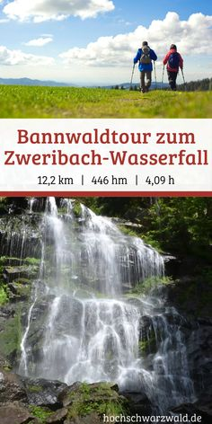 Durch den mystischen Bannwald zum Zweribach-Wasserfall If you want to do a mystical Black Forest hike is just right. Through the enchanted Bannwald it goes to a small enchanted waterfall, which is a real insider tip. Camping And Hiking, Hiking Trails, Outdoor Camping, Appalachian Trail, Lofoten, Pacific Crest Trail, Colorado Hiking, North Cascades, Ice Climbing